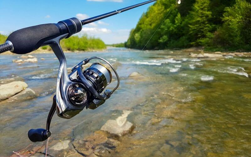 Spinning Reel Under 100 Dollars